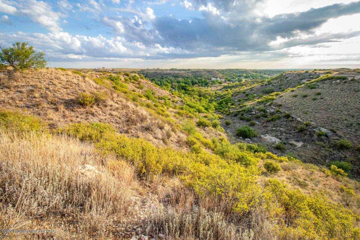 0 Rm 1061 (Tascosa Rd) - Photo 1
