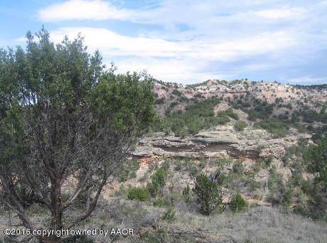 15001 Canyon Pass Rd, Amarillo, TX 79118 (#20-805) :: Lyons Realty
