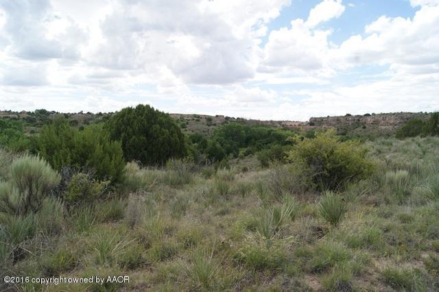 5 Mcafee Timbercreek Dr North Dr, Amarillo, TX 79118 (#16-100526) :: Gillispie Land Group