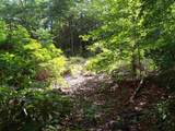 Lot 4 Woods Pond Court - Photo 3