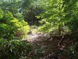 Lot 5 Woods Pond Court - Photo 3