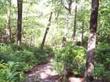Lot 5 Woods Pond Court - Photo 5