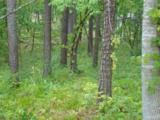 Lot 136 Island Pine - Photo 5