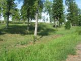 244 Gardenia Drive - Photo 4