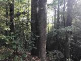 0 Red Bird Hill Lane - Photo 3
