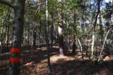 281 Spring Branch Circle - Photo 3