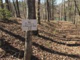 544 Big Creek Way - Photo 21