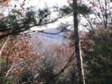 308 Mountain Summit Road - Photo 8