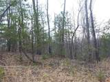 895 Ross Mountain Road - Photo 10