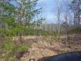 895 Ross Mountain Road - Photo 11