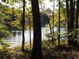 121 Falling Leaf Drive - Photo 5