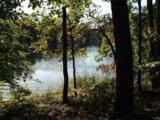 121 Falling Leaf Drive - Photo 8