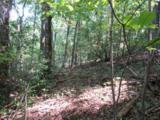 Tract 23 Old Chapman Trail - Photo 3