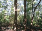 Tract 23 Old Chapman Trail - Photo 5