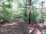 Tract 23 Old Chapman Trail - Photo 6