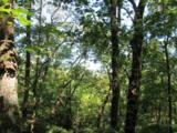 Tract 23 Old Chapman Trail - Photo 7