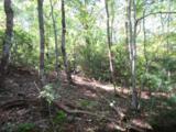 Tract 23 Old Chapman Trail - Photo 8