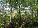 Tract 23 Old Chapman Trail - Photo 9