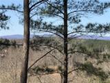 258 Piney Woods Trail - Photo 16