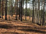 258 Piney Woods Trail - Photo 4