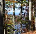 118 Fallen Oak Way - Photo 1