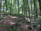 Lot 47 Harbor Point Clear Point Trail - Photo 11