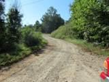 203 Dreugh Evins Drive - Photo 29