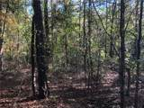 Lot 30 Cherokee Path Drive - Photo 10
