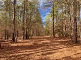 501 Mimosa Trail - Photo 17