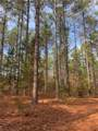 501 Mimosa Trail - Photo 18