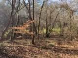 501 Mimosa Trail - Photo 20