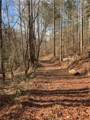 501 Mimosa Trail - Photo 22