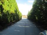 259 Jocassee Ridge Way - Photo 11