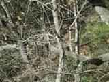 261 Jocassee Ridge Way - Photo 5