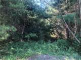 16 Deer Creek Trail - Photo 2