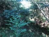 16 Deer Creek Trail - Photo 3
