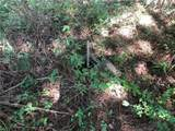 16 Deer Creek Trail - Photo 4