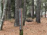 31 Tullamore Trail - Photo 5