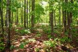 Lot 5 Spring Hollow Bark Shed Trail - Photo 3