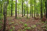 Lot 6 Spring Hollow Bark Shed Trail - Photo 2