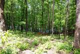 Lot 7 Spring Hollow Bark Shed Trail - Photo 4