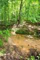 Lot 12 Spring Hollow Bark Shed Trail - Photo 6