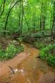 Lot 12 Spring Hollow Bark Shed Trail - Photo 8