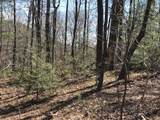 139 Indian Pipe Trail - Photo 12