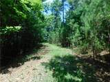 Lot 23 Big Creek Way - Photo 1