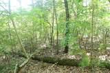 105 Junaluska Trail - Photo 5