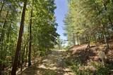 205 Appalachian Trail - Photo 14