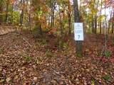 Lot 7 Tree Cat Trail - Photo 7