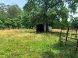 114 Bishop Branch Road - Photo 40