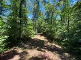 13 & 13A River Trail - Photo 6